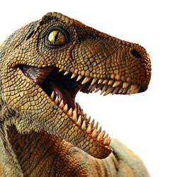 There were dinosaurs on the ark but they all died before they reached land because the ark was almost struck by an asteroid and all the dinosaurs had weak hearts and died of cardiac arrest. What? The Bible doesn't say that DIDN'T happen!